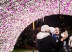Luci d'Artista Salerno 2015 il giardino Incantato, Maria Saggese